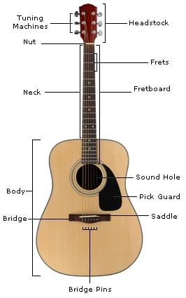 parts of a guitar learn the guitar s anatomy guitar lesson world rh guitarlessonworld com