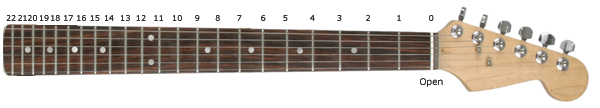 Fretboard with fret numbering