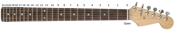 Fretboard with Numered Frets